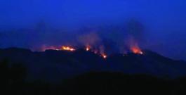 Wildfires devastate North Bay communities